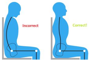 Pelvic position seated posture